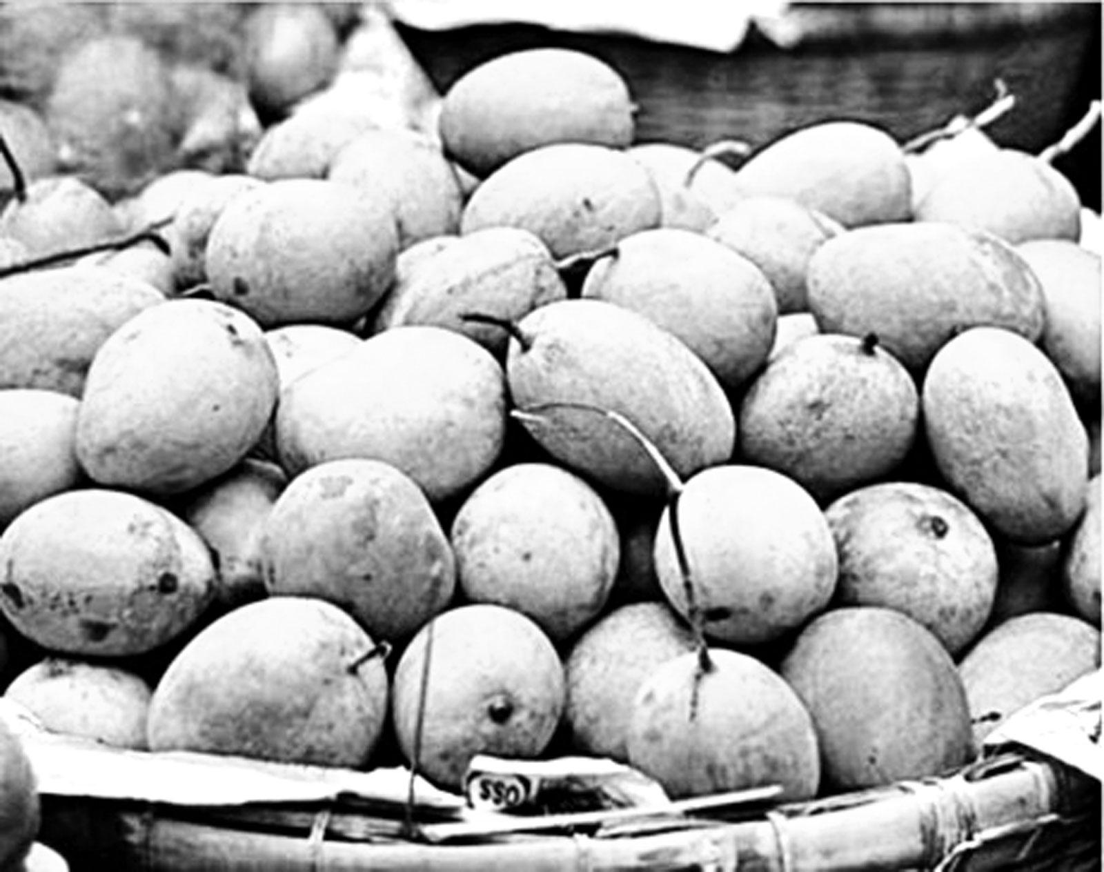 কলাপাড়ায় সস্তায় 'লক্ষ্না' আম কিনতে মানুষের ভিড়