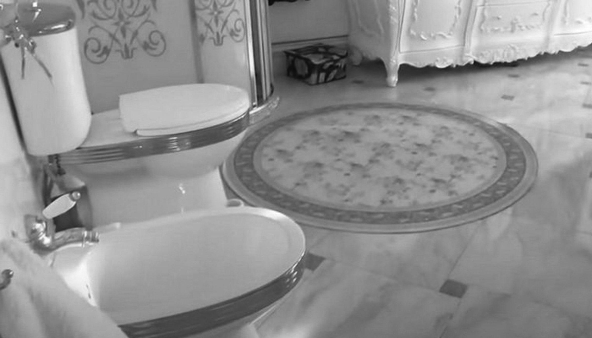 রাশিয়ায় দুর্নীতিগ্রস্ত ট্রাফিক পুলিশের বাসায় স্বর্ণের টয়লেট
