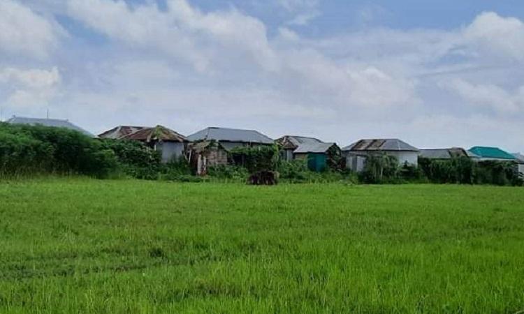 চৌহালীতে চরে  শিক্ষার আলো বঞ্চিত ৪ গ্রামের শিশুরা