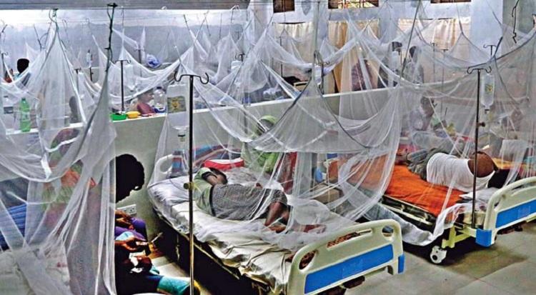 ডেঙ্গু আক্রান্ত হয়ে আরও ২৮৮ জন হাসপাতালে ভর্তি